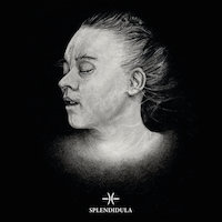 Splendidula - Post Mortem