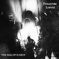 Psilocybe Larvae - The Fall Of Icarus