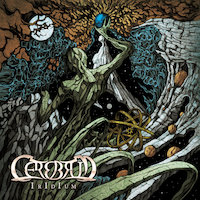 Cerebrum - A Face Unknown