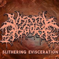 Visceral Disgorge - Architects Of Warping Flesh