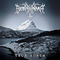Borknagar - Voices