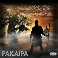 Dividing The Element - Pakaipa