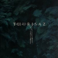 Thurisaz - Re-Incentive
